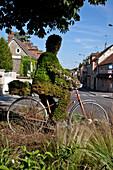 Man On A Bicycle, Vegetal Sculpture, Saint-Pierre-De-Bailleul, Eure (27), France
