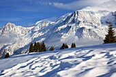 France, Haute-Savoie (74), the Mont-Blanc, in winter, since the Prarion winter sports resort of Les Houches, at the bottom of the Aiguille du Midi
