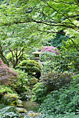 The Japanese Garden is a 5.5 acre site, laid out using traditional Japanese horticultural and design principles, planting and structures. Stone lantern above a pool.