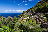 Mediterranean coast road, estate with terraced acreage, Banyalbufar, Mallorca, Spain