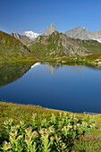 Mont Blanc range with Mont Blanc and Grandes Jorasses reflecting in a mountain lake, Pennine Alps, Aosta valley, Italy