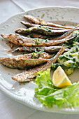 Grilled sardines with salad and lemon, Rovinj, Istria, Croatia