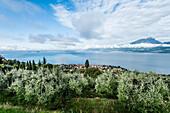 View towards Gardasee and the City of Torri del Benaco, Lago di Garda, Province of Verona, Northern Italy, Italy