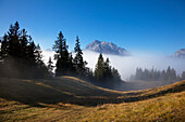 Path in the fog, view onto Hochkalter, Berchtesgaden region, Berchtesgaden National Park, Upper Bavaria, Germany, Europe