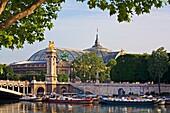 Alexander bridge, Pont Alexandre, Belle Epoque, Grand Palais  Paris  France.