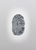 Close up of fingerprint on paper. Finger print, human black and white personnel, mark, contact, Forensic science, examination, scene of crime evidence, forensic exam,scrutiny, analytical, finger print,contamination,forensic, forensics