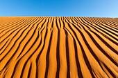 USA, Arizona, Monument Valley Tribal Park, Navajo Indian reservation, desert scenery , dunes , Ripple marks
