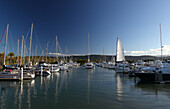 Harbour, Port, port Douglas, Queensland, Australia, rest, are relaxing, vacation, holidays, take it easy, relax, dip tourism, tourism, town, city, sea, east coast, ship, boat, sail boat, sail yacht, yacht, yacht harbour, mountains, palms, protected, safe,