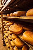 Hand-made cheese Binibeca Jaume Pons, denomination of origin craftsman-farm Alcaiduset Mahon, Alaior, Menorca, Balearic Islands, Spain, Europe