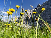 Karwendel Mountain Range between Johannestal and Lamsenspitze  The Karwendel limestone mountain range is the largest range in the eastern alps  Large parts of the Karwendel are protected and a popular destination for tourists, hikers and climbers  Europe,