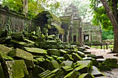 Ta Prohm is the modern name of a temple at Angkor, Siem Reap Province, Cambodia, built in the Bayon style largely in the late 12th and early 13th centuries and originally called Rajavihara Located approximately one kilometre east of Angkor Thom and on the