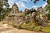 Ta Som, A small temple at Angkor, Cambodia, built at the end of the 12th century for King Jayavarman VII, It is located north east of Angkor Thom and just east of Neak Pean, The King dedicated the temple to his father Dharanindravarman II Paramanishkalapa