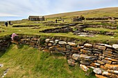 Birsay, Orkney Mainland, Scotland, UK, Great Britain, Europe  Remains of Norse houses in a settlement excavated on the Brough of Birsay