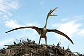 Quetzalcoatlus in Leba Park dinosaur theme park, Poland