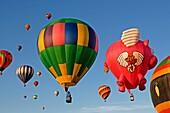 Hot air balloons Albuquerque NM