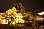 Ottoneum, natural history museum at night, Steinweg, Kassel, Hesse, Germany, Europe