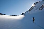 Ski tourer ascending to the Hintere Schwaerze Northface, Martin Busch hut, Oetztal Alps, Oetztal, Tyrol, Austria