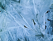 Frozen tundra pond close-up Bethel Western AK winter