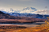 Scenic view of Mt. McKinley with colorful Autumn tundra in the foreground, Denali National Park, Alaska, HDR image