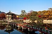 Gyeongbok palace, hyangwonjeong, fall foliage, autumn