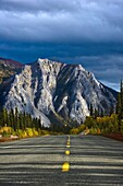 Tagish Road, Mount Nares, Yukon Territory, Canada, Roadside Trees In Autumn