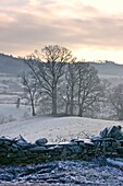 Cumbria, England, Rural Stone Fence In Winter
