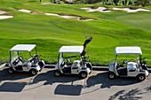 Golf Carts In A Row Next To Golf Course
