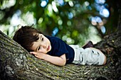 Young Boy Laying On Tree Branch
