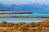 blocked for illustrated books in Germany, Austria, Switzerland: Autumn scenery at Lake Tekapo and glacial waters, Mackenzie Country, South Island, New Zealand