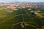 blocked for illustrated books in Germany, Austria, Switzerland: Aerial view of vineyards in Wairau valley, Marlborough wine-growing area, Blenheim, Marlborough, South Island, New Zealand
