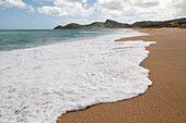 Deserted beach with golden sand, northern coast, North Island, New Zealand