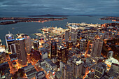 View from Sky Tower over Auckland harbour with highrise buildings in the evening, Auckland City, North Island, New Zealand