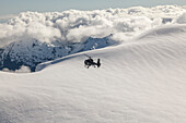 Helicopter flight over snowy mountains, South Island, New Zealand