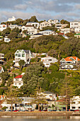 Historic timber houses on the waterfront, Wellington, North Island, New Zealand
