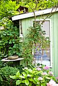 Gartenhaus mit Vogelhaus und Pflanzen vor dem Fenster, Wien, Österreich