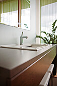 Basin with mirror and a plant in the bathroom, Styria, Austria