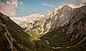Panoramic view at the forested valley of country park Logarska Dolina, Alps, Stajerska, Slovenia