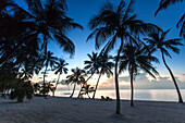 Beach at sunrise at Moorings Village Resort, Islamorada, Florida Keys, Florida, USA