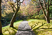 Nitobe Memorial Garden, a traditional Japanese Tea and Stroll garden located at the University of British Columbia, Vancouver, British Columbia, Canada