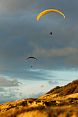 California, La Jolla, Paragliders flying over the coast. FOR EDITORIAL USE ONLY.