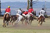 Hawaii, Oahu, North Shore, men on horseback playing polo on oceanside fields. NO MODEL RELEASE