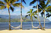 Hawaii, Kauai, Hanalei Bay Princeville, Two hammocks hang between palm trees on sandy tropical beach.
