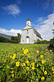 Hawaii, Maui, Kaupo, Old church with bright yellow flowers in foreground