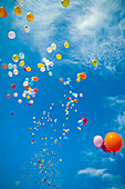 Hawaii, Colorful balloons float in the air against a blue sky with white clouds