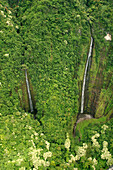 Hawaii, Maui, Hana Coast, Waihiumalu waterfall, Two falls, green and lush, view from above.