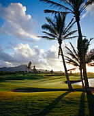 Hawaii, Kauai, Poipu Golf Course, afternoon landscape, palm trees with shadows, green with flag