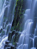 Oregon, Cascade Mountains, Three Sisters Wilderness, Lower Proxy Falls B1598