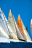 Florida, Key West Race Week, many colorful sails lined up, blue skies C1309
