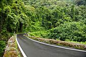 Hawaii, Maui, The lush Road To Hana.
