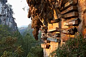 'The Famous Hanging Coffins Rest High On The Limestone Cliffs In Echo Valley Near The Mountain Village Of Sagada, In The Cordillera Region, North Luzon, Philippines'